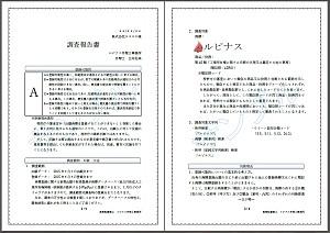 調査報告書(HP掲載用、リンク見本)